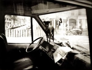 DOG IN MAIL Van, Paris-web copy.jpg